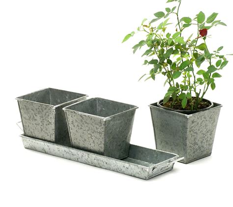 herb pots tin herb pot galvanized