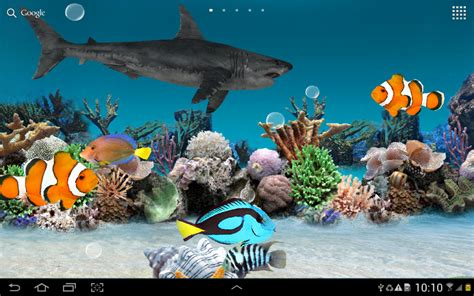 live wallpaper for pc aquarium 3d aquarium live wallpaper download apk for android