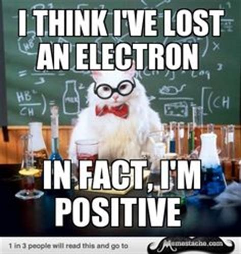 Professor Cat Meme - 1000 ideas about chemistry cat on pinterest chemistry