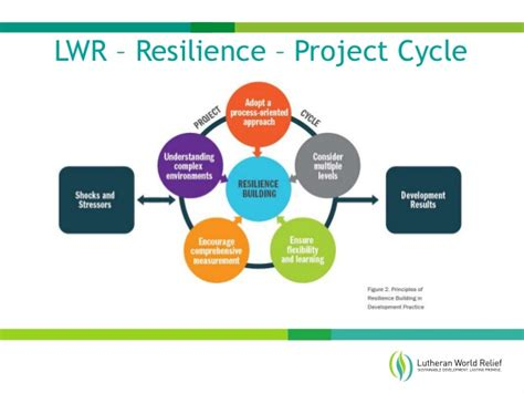 type r transformative resilience for thriving in a turbulent world books resilience thought summit july 19 20 2016