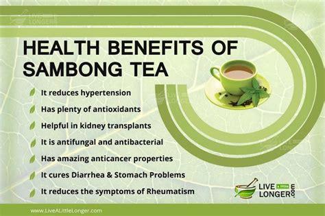 benefits of houseplants best 25 oolong tea health benefits ideas only on