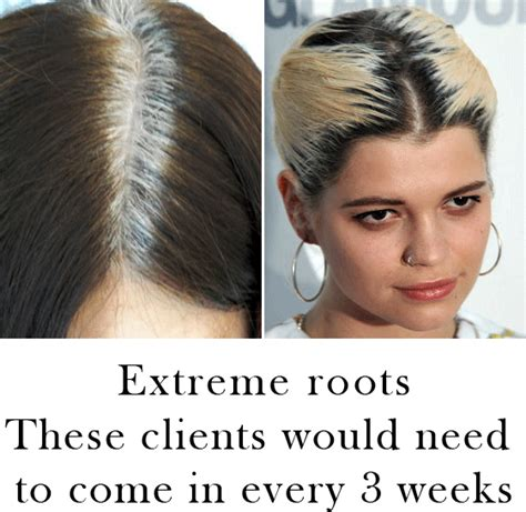 how to blend in hair roots 25 best ideas about grey ombre hair on pinterest grey dyed