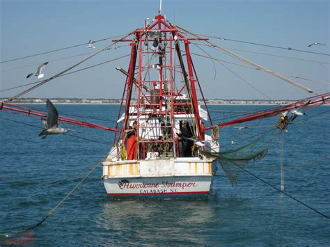 the shrimp boat calabash nc