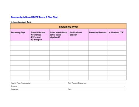 haccp plan template free 6 best images of blank haccp flow chart template printable