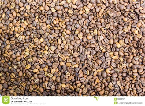 light coffee color coffee beans closeup background stock image image 60083797