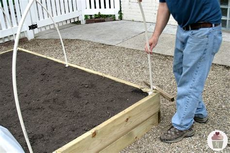 raised garden bed cover   nature