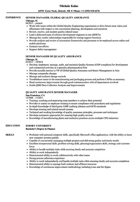 software development manager resume samples visualcv resume