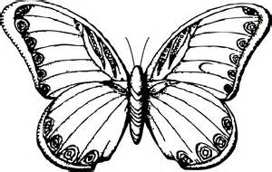Butterfly drawings black and white clipart best