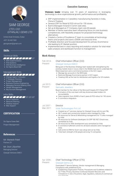 cio report template chief information officer resume sles visualcv resume