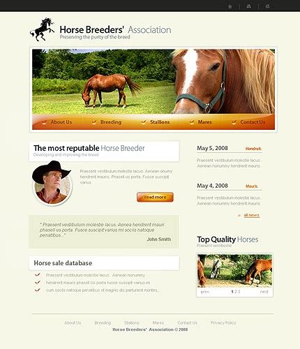 horse templates for photoshop template 19860