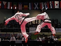 Image result for deadliest martial art