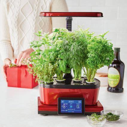 sur la tables aerogarden harvest  images indoor