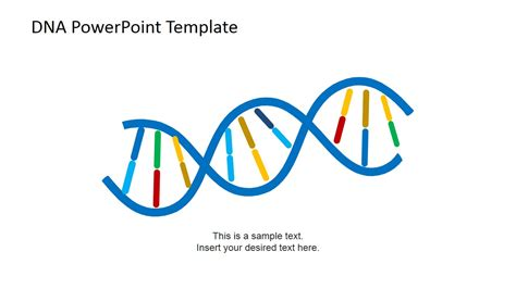 template dna dna strands powerpoint template slidemodel