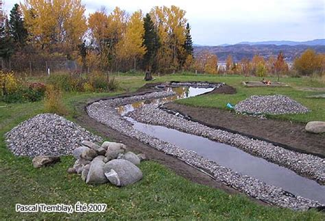 backyard stream construction streambed landscaping design idea diy garden creek or garden stream