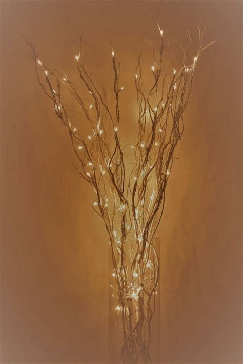 led lighted curly willow branches it takes two