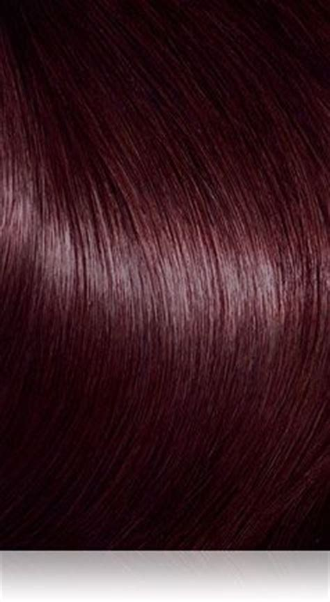 brown cherry hair color 2445 best images about hair colour on pinterest pastel