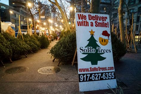 how much more do christmas trees cost for 2018 why your tree costs so much this year