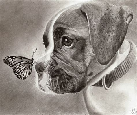 drawing of a puppy 10 lovely drawings for inspiration hative