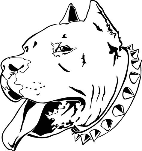 free coloring pages of drawing pitbull