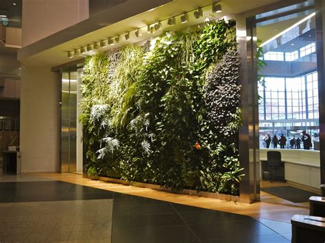 special considerations  walls growing green guide