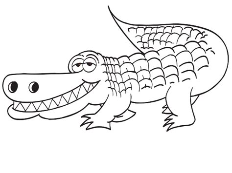 Crocodile Image Outline by White Alligator Outline Clip At Clker Vector Clip Cliparts Co