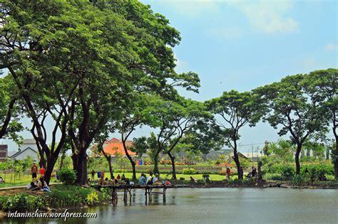 Bibit Jagung Di Surabaya wisata taman kota surabaya kebun bibit wonorejo the