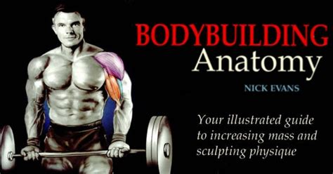 bodybuilding complete 2 books in 1 bodybuilding science bodybuilding nutrition volume 3 books top 2 best bodybuilding workout books for free all