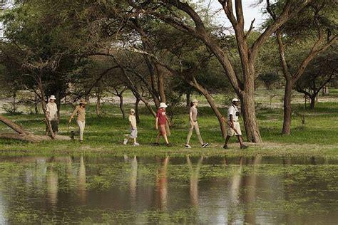 1431702064 on safari a young explorer s mari s review of young explorers family safari in botswana