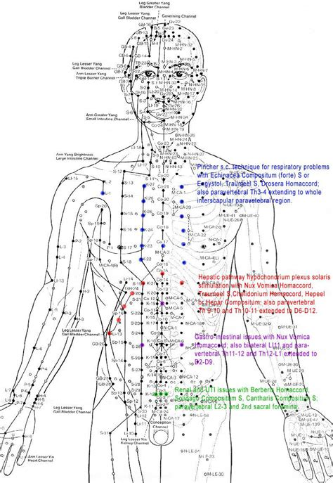 pressure points acupuncture pressure points and explanations quotes