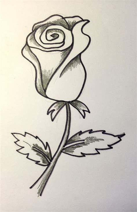 imagenes de una rosa para dibujar faciles c 243 mo dibujar una rosa abierta y cerrada 161 hoy no hay cole