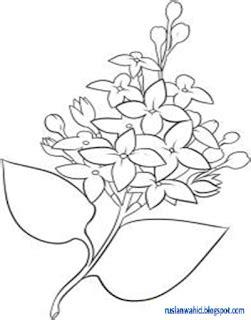tutorial menggambar bunga cara mudah menggambar bunga lili step by step seni rupa