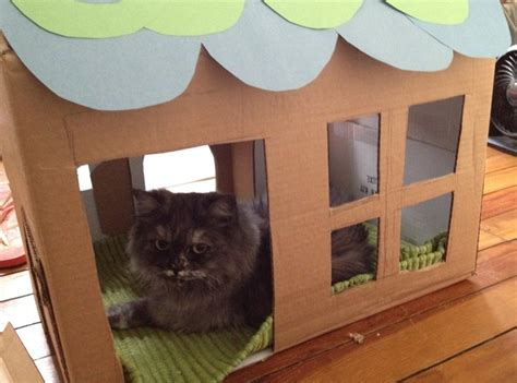 cardboard house for cats cat cardboard house cat stuff pinterest cardboard houses sweet home and house