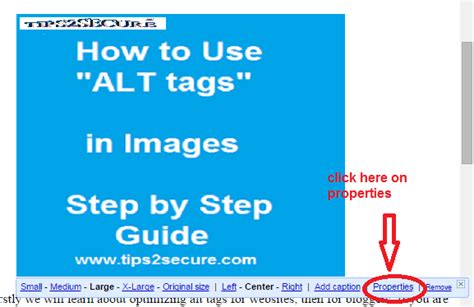 alt image tag optimize images with alt tag and get organic traffic