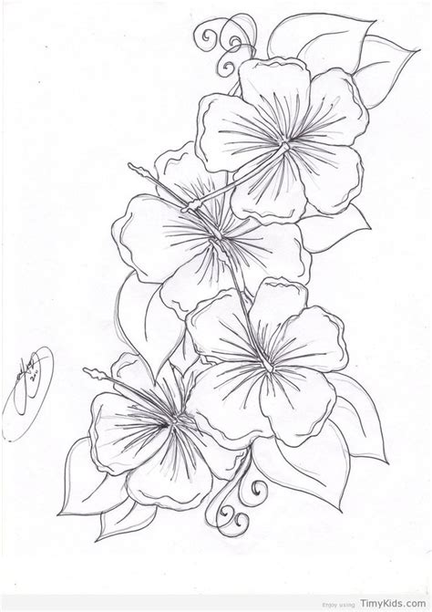 beautiful flower coloring pages timykids