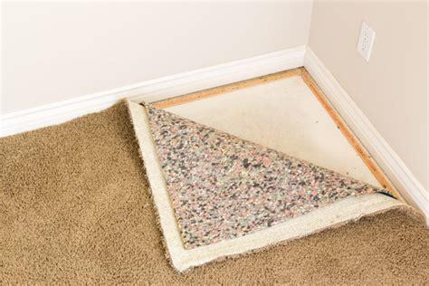 remove set  urine stains  carpets