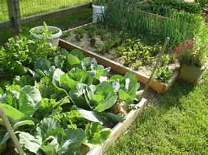 Create a raised bed vegetable garden the poetic vegetable garden