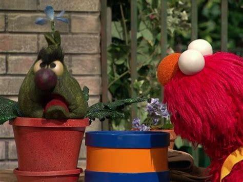 sesame street stinkys smelly flower tv episode