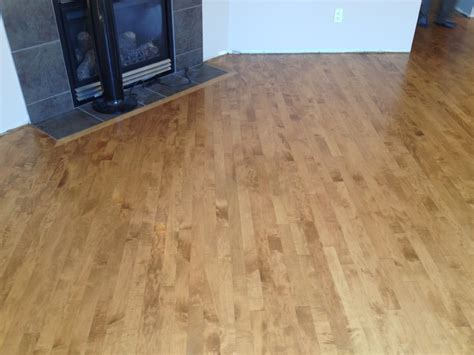 maple hardwood bona nutmeg stain modern calgary by