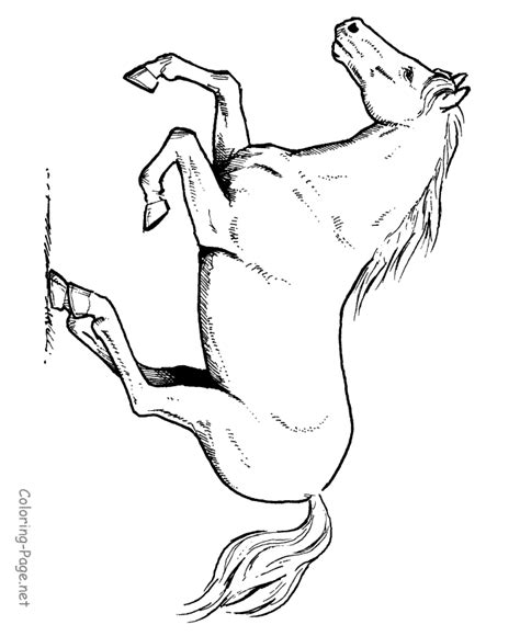 Coloring Pages Of Horses Running coloring page running