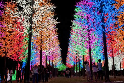 christmas trees in malaysia pics
