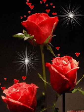 imagenes bellas rojas gif animados de rosas rojas y corazones