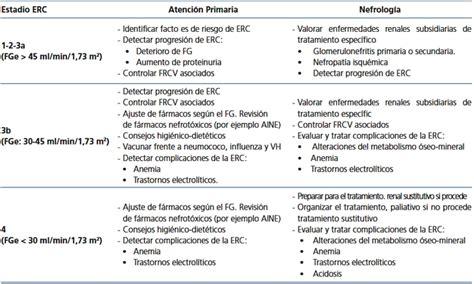 cadenas ligeras e insuficiencia renal acido urico y insuficiencia renal leer m 225 s art 237 culos