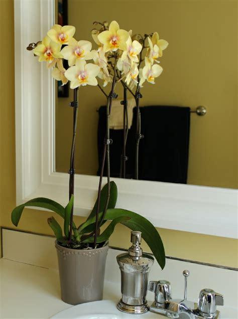 gelbe badezimmer dekorieren ideen deko mit orchideen 31 kreative ideen