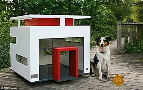 types of dog houses pooch owners treat pets to modern homes such as the suburban doghouse daily mail online