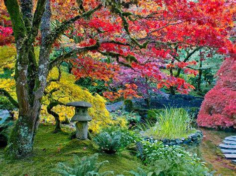 imagenes de jardines japoneses fotos los colores del oto 241 o jardines japoneses de