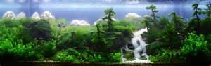 Japanese Aquascape Aquascaping Les Plus Beaux Aquariums
