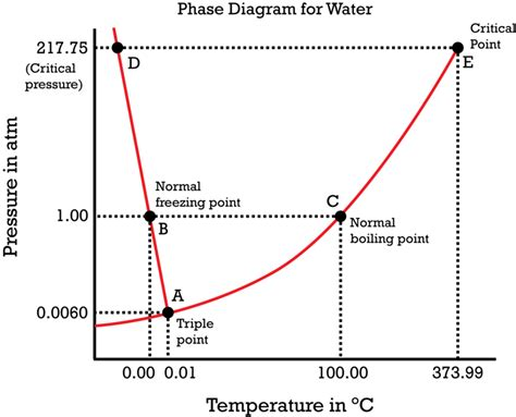 what is the point on a phase diagram phase diagrams ck 12 foundation