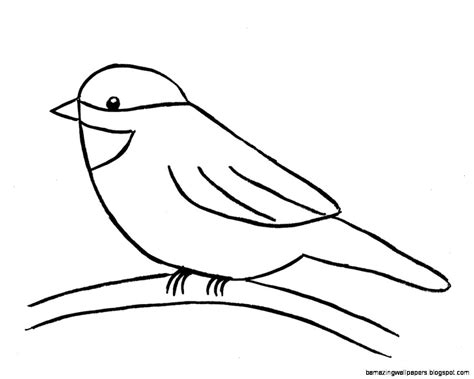 how to draw doodle birds the gallery for gt easy drawings for about birds