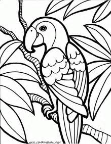 free printable coloring sheets for parrot coloring pages free templates to color and cut