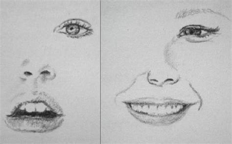 imagenes de narises a lapiz dibujos a lapiz mart911 fotolog